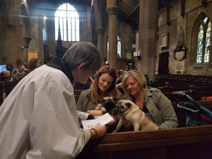 animal-blessing-service