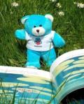 Bookstart_Bear_tiny_png